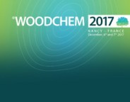 Site-Logo Woodchem 2017